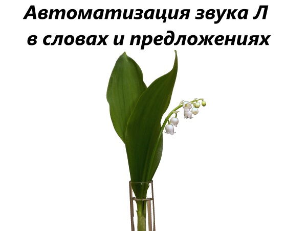 lily-of-the-valley-